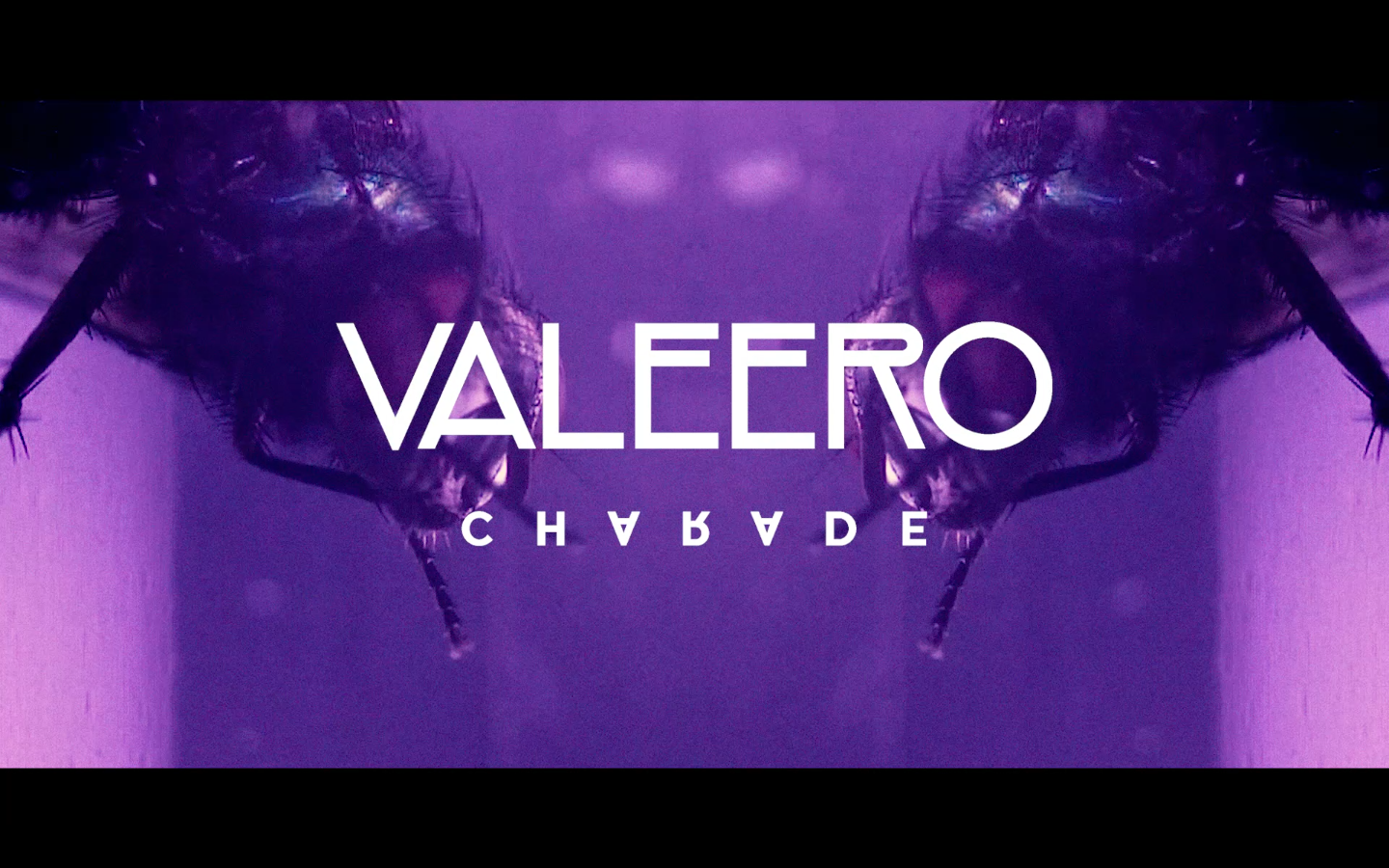 valeero-charade-screenclip3