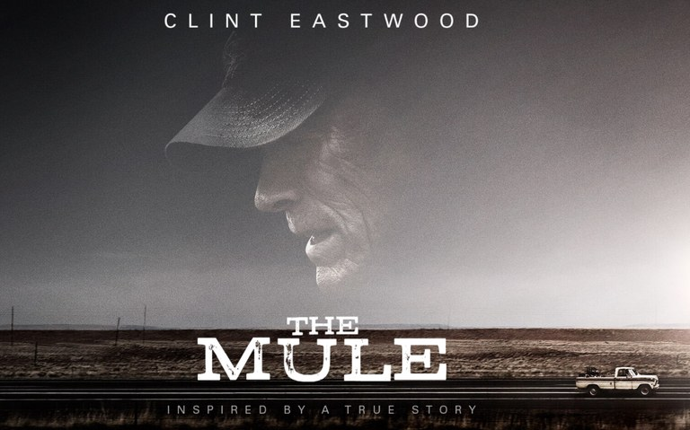 CrypticimagesThe-Mule